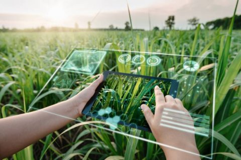 Consumidor está mais preocupado com sustentabilidade, mostra estudo da IBM